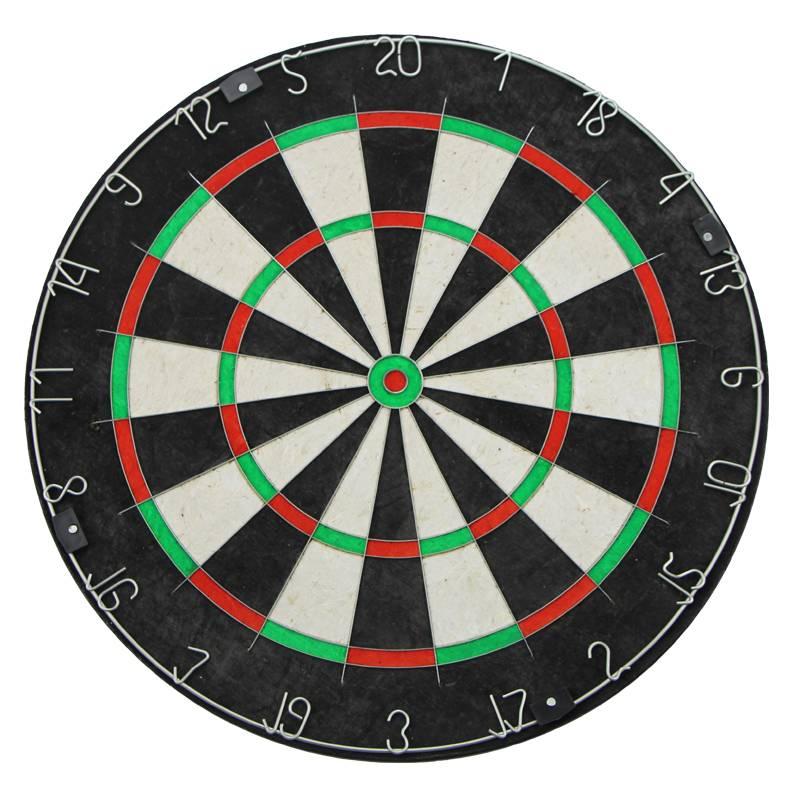A dart board, Professional dart board